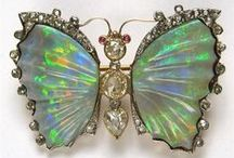 Butterfly Bling! / by Insect Lore