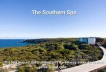 Video Tours / Take a tour of our favorite spa resorts and day spas! / by SpaIndex.com Guide to Spas