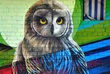 Owls / by Kelly Anne