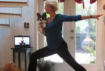 Doga: Yoga with Your Dog! / Exercise and bond with your dog at the same time! Join us for #Doga and #Yoga poses in short, instructional video form.Here's a list of all the videos: http://ow.ly/zkaRm