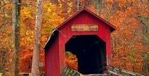 Feels Like Fall - Autumn Inspiration / Inspiration, ideas, and wanderlust for fall. Romantic fall activities, autumn foliage, and fall in New England.