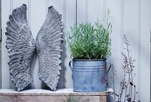 Outdoor Living / Shabby chic garden decorations for you home.  Create an inspiring garden to call home with Cox and Cox.