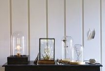 Trend | The Art of Display / We have embraced the art of display with beautiful objet encased in stunning display domes