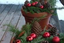 Christmas Decorations / by Marcia Zandstra