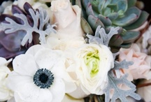 Winter Weddings / by The Wessex Flower Company