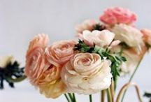 La fleur  / by Amanda Reynolds (Schleuss)