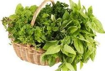Herbs / Herbal recipes, healing, and reference.