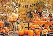 Halloween / by Sandra Lee