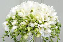 Wedding Flowers / by Sandra Lee