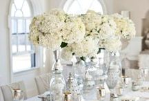 White Weddings / White is a color that never goes out of style with wedding, it's very chic and simple and elegant.. / by Stacey Jones-Wedding Designer