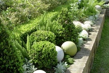 Gardening.. I love / by Melissa @ Nest design inc