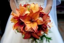 Wedding / by Tiffany DeBoer
