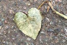 Love / Photo of graffiti hearts taken on iPhone
