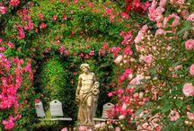 Garden 素敵な庭 / 誰も住んでいない実家の庭をピンタレストの画像を参考ににして、癒される場所にしたいですね☺️