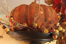 Fall Harvest / by Kelley Phillips