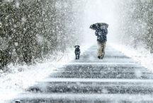 Winter / by Linda Lemieux