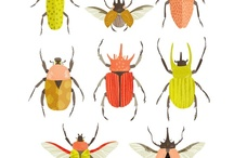 Insects / Prints and products with insects. Everything is on my wishlist.  / by Marike Bijlsma