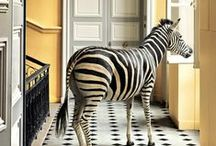 Home Decor>Creature Comfort / by PW. Ragont