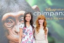See Chimpanzee Save Chimpanzee #DisneyGlobalEvent  / DisneyNature Chimpanze opens in Theaters April 20! Red Carpet Event experiences and where to find more information