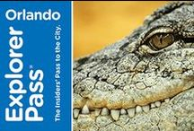 Orlando / Go Orlando Card - all the best Orlando attractions for one low price!