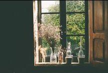 Flores * plantas * arranjos * vasos
