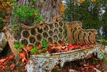 Outdoor inspirations / by Kathy Knaus