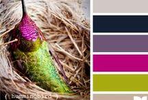i color