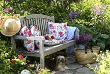 * Perfect Little Gardens *
