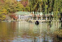 * Central Park, NY *