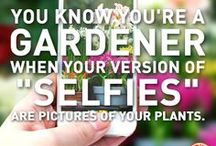 GARDEN QUOTES / by Lisa Kay