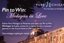 Pin to Win: Michigan in Love