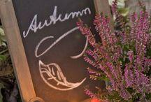 Fall in love / Herfstdecoraties, styling en comfortfood. Haal de natuur in huis