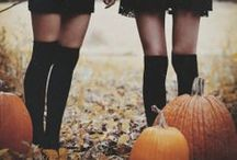 hocus pocus / fall + halloween / by camp 1899