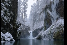 Winter-Pretty but Cold / by Susan Starnes