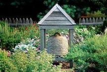 Garden fun / by Linda Rudman Behind My Red Door