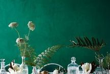 Floral Garden / by Jira
