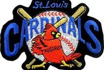 St Louis Cardinals / by Susan Smith