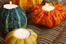 Fall Holidays / by Cindy Bay