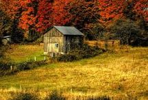 Autumn Leaves and Love / by Kathy Markert