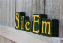 Baylor Green and Gold / All things Baylor! / by Shanna Zoch
