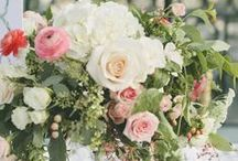 Wedding Florals / by Jody Larsen