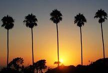san diego. / Skylines to ocean views, San Diego, California