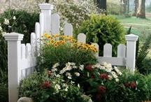 Flower Gardens / by Susan Mathern