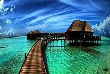 Travel the World & the 7 Seas...