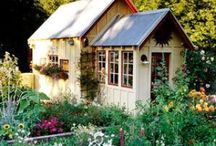 Green House/Garden Shed / by Kasey James