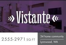 Vistante from Sundquist Homes