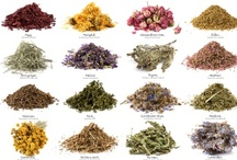 Herbocology & Spice-ocology  / #Herbs and #Spices have made my #Unprocessed life complete! There is a world of flavor out there, and it does not include processed garbage. My #Recipes include these beautiful flavor profiles. www.agutsygirl.com #Eat #Foodie #Kitchen #RealFood