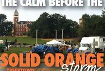 Clemson / by Amy Hoehne