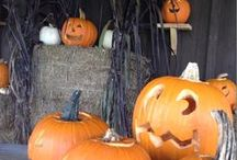 Halloween Ideas / by P. Allen Smith