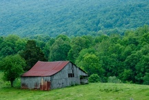 Old Barns / by P. Allen Smith